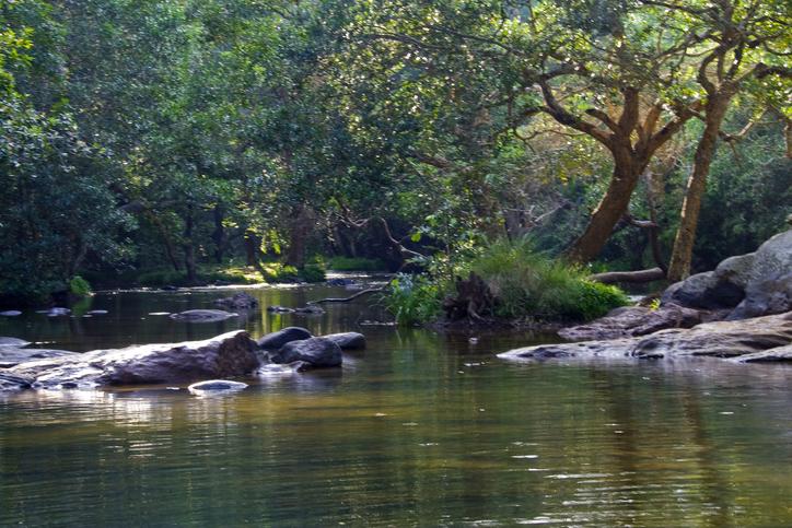 Kaveri Nisargadhama near Kushalnagara, rivers of Karnataka