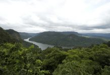 View of Sharavathi river and valley in Karnataka. this is reserved forest and home to Lion tailed macaques, India