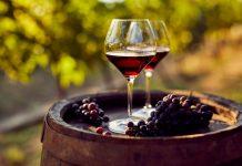 vineyards in Bangalore