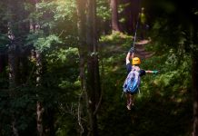 ziplining through a forest