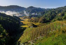 Dura, Ziro Valley, Arunachal Pradesh
