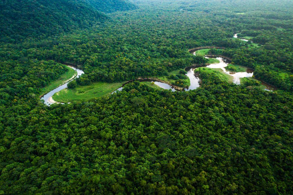 Amazon river in Brazil, longest rivers in the world