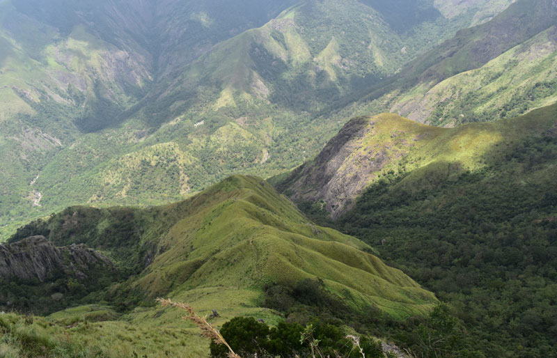 places to visit in Munnar